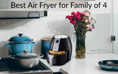 Top 5 Best Air Fryer for Family of 4 in 2021 (Expert Guide)