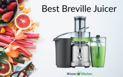 Best Breville Juicer of 2021 (Top 5 Models Compared)