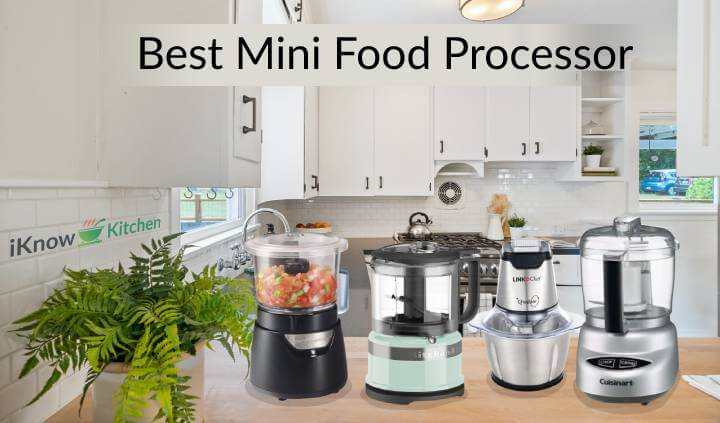 Top 5 Best Mini Food Processor of 2021 (The Ultimate Review)