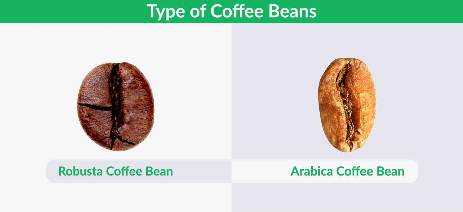 Type of coffee bean